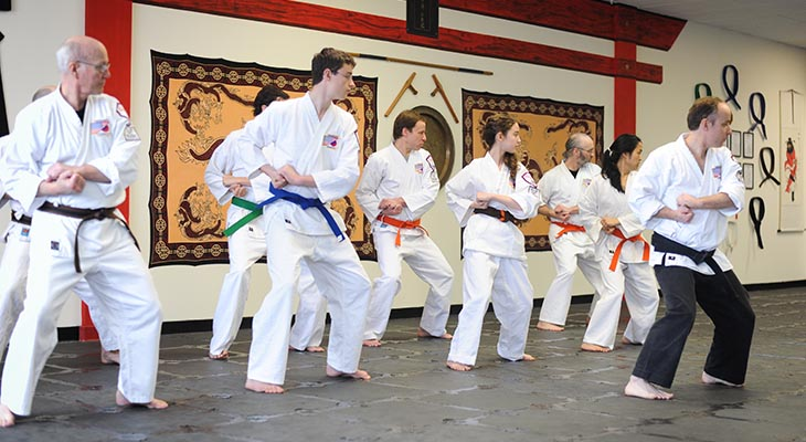 Budo Martial Arts Karate-do