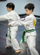 Kids Karatedo Punch